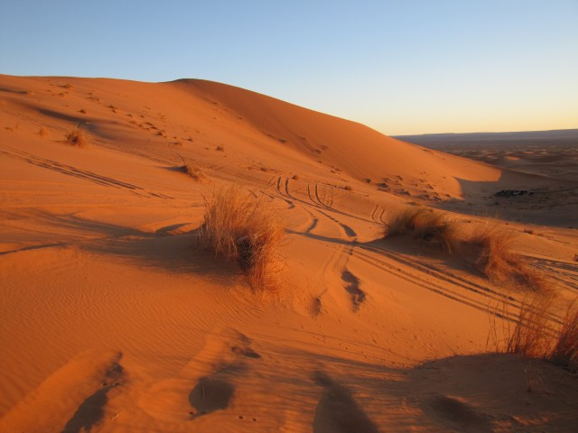 Sahara Desert (Photo: Trevor Hampel)
